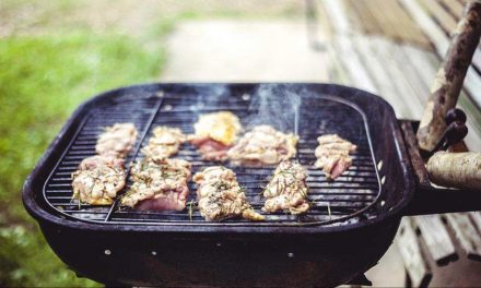 Barbacoas para el camping: tipos, análisis, opiniones y precios